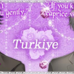 Walkthrough – The Cinderella Contract – Turkiye